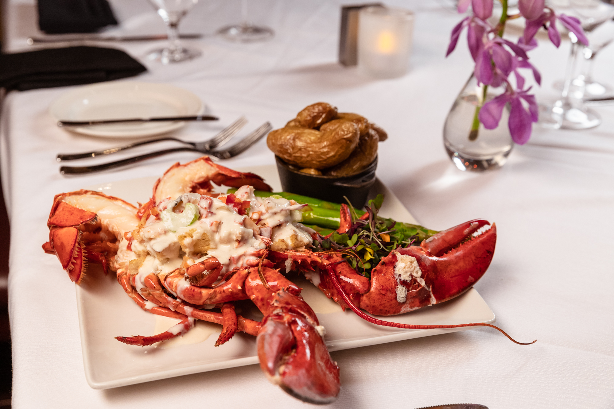Whole Maine Lobster